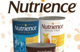 nutrience-food-wet