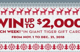 WIN 1 of 7 $2,000 Giant Tiger gift cards