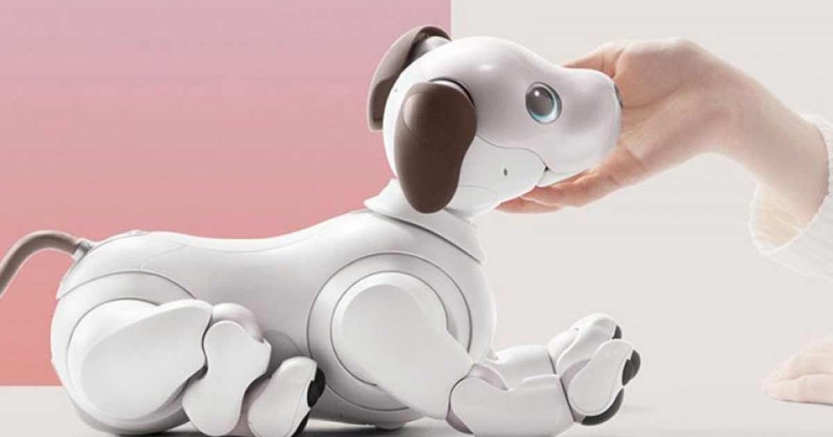 win sony robot dog aibo