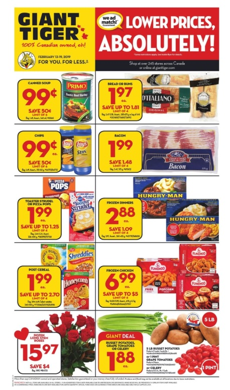 Giant Tiger Flyer Lower prices Absolutely