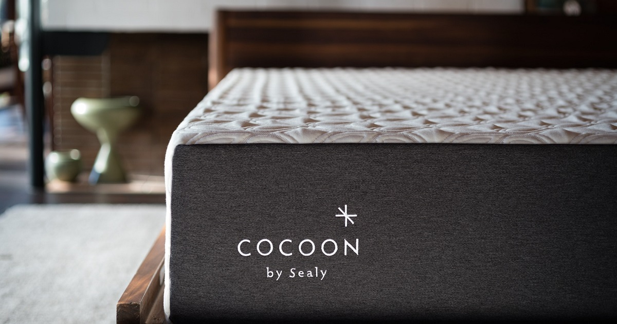win cocoon sealy mattress