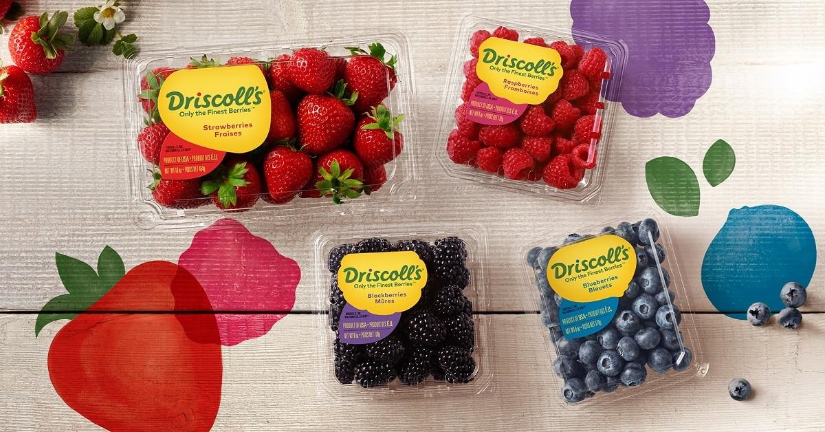 win driscolls berries