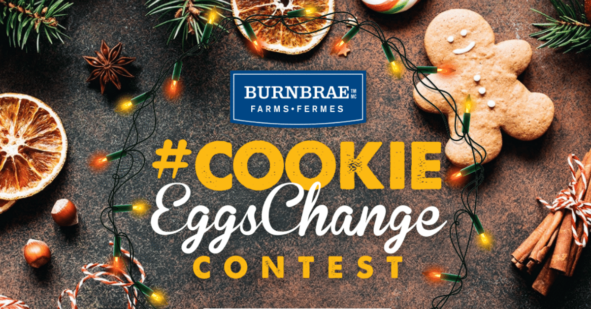 Burnbrae eggschange contest