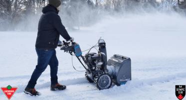 gas snowblower ct