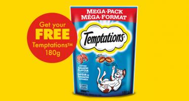 temptation no frills
